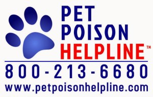 pet poison hotline