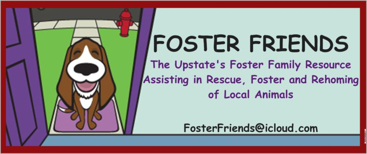 Foster Friends Logo with Border
