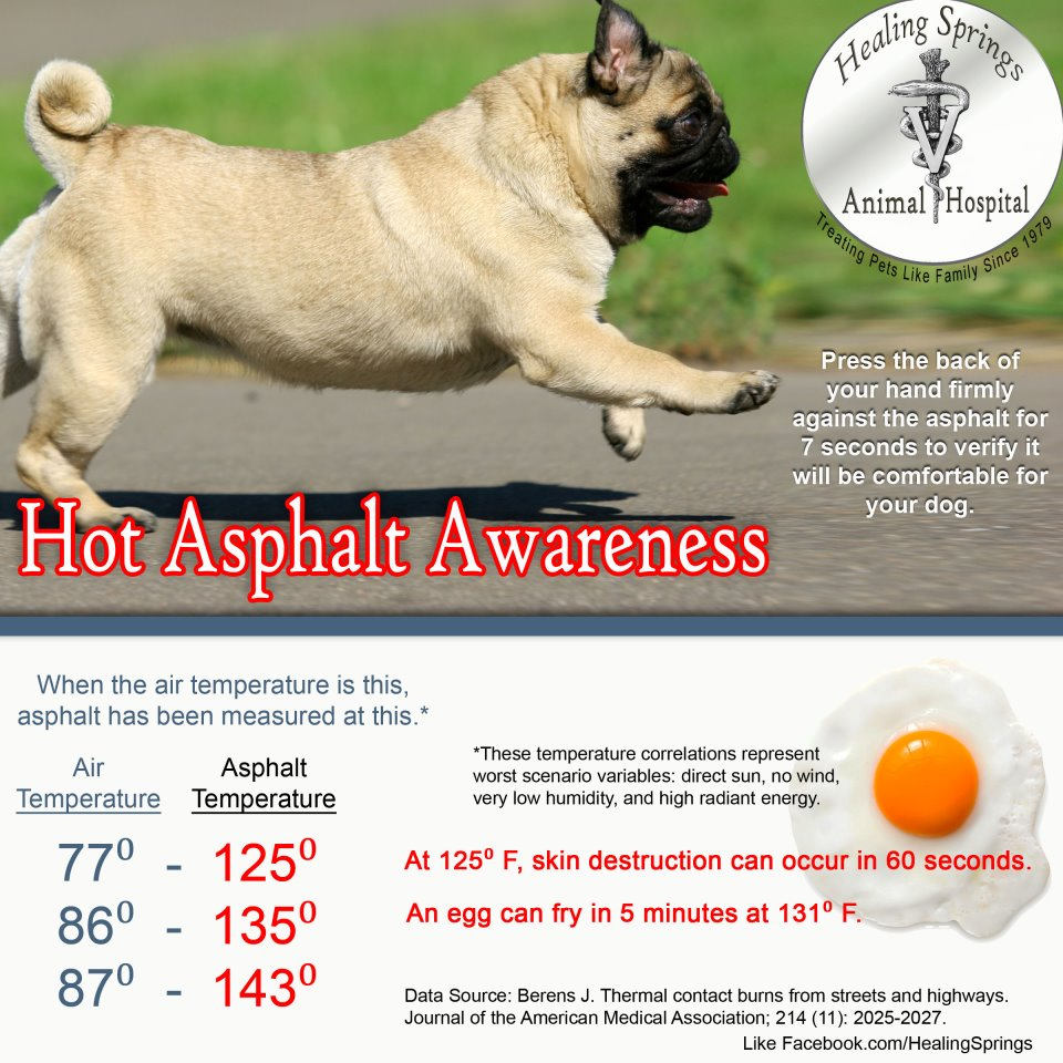 Hot Asphalt Awareness